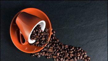 Quotidiano Point Coffee & Tea, artisti del caffè e del té
